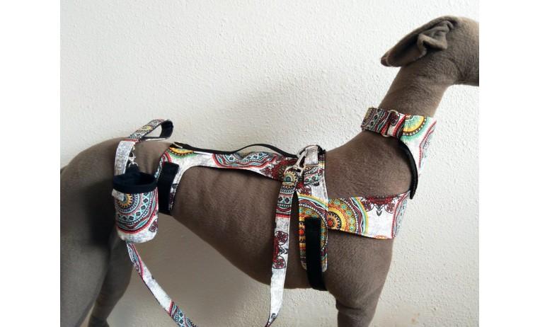 Arnés para perros pro-safe elegance