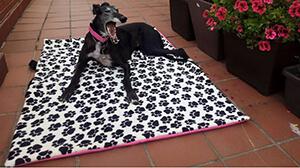 Camas para perros de buhoplace